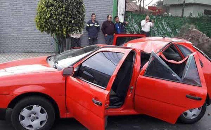 La caída de grandes árboles en la Ciudad de México causó daños a varios vehículos. (Excélsior)