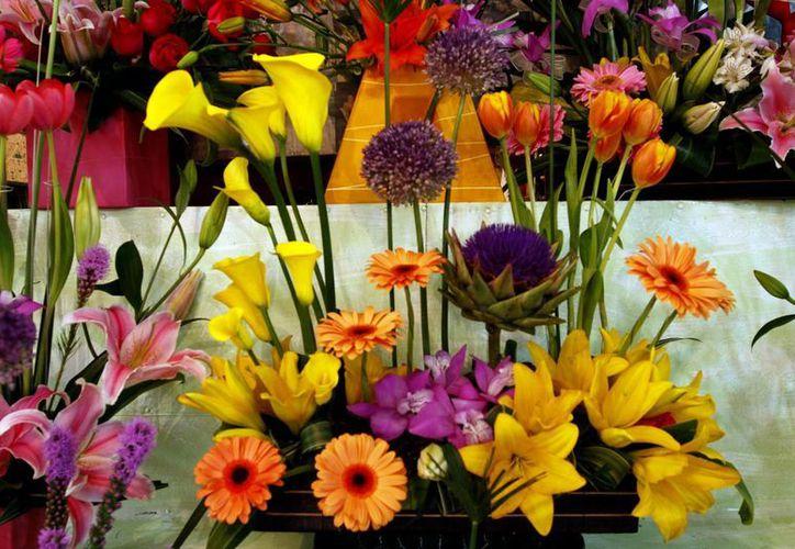 Quien lleve flores y plantas prohibidas a EU se hará acreedor de una multa de hasta 250 mil dólares. (Archivo/Notimex)