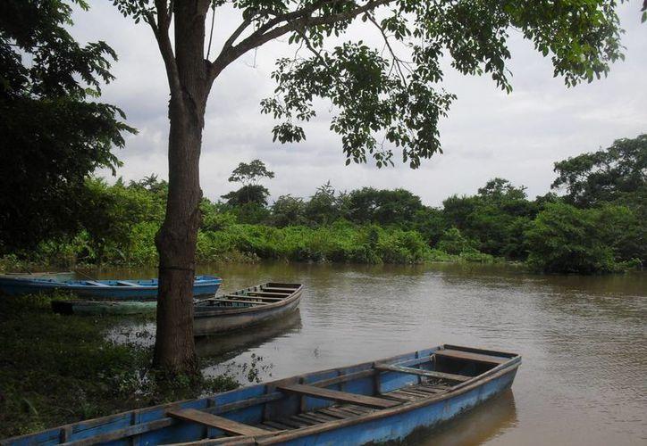 No se ha registrado un incremento considerable en el río, porque han sido mínimos los escurrimientos provenientes de Campeche. (Harold Alcocer/SIPSE)