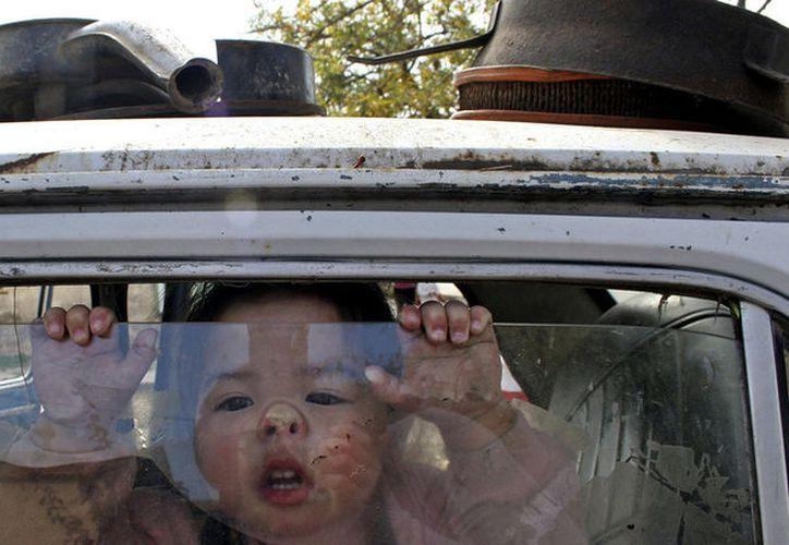 Alrededor de 37 niños mueren anualmente en EE.UU. por esa causa. (Imagen ilustrativa:Carolina Camps / Reuters)