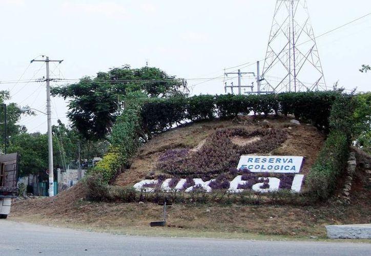 Imagen de la entrada de la Reserva Ecológica de Cuxtal, el pulmón de Mérida. (Milenio Novedades)