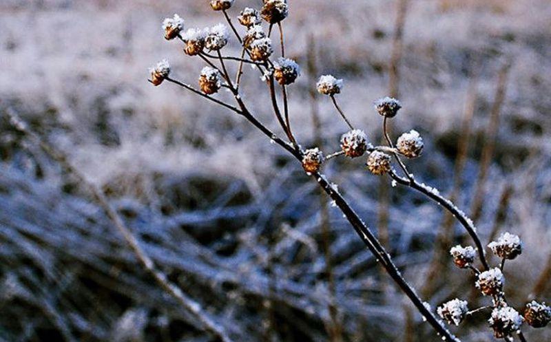 Durango amanece a -14°, clima mejorará en la tarde