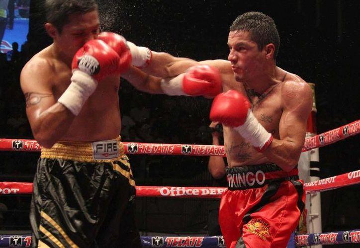 El jaliscience Terrazas (der.) dará pelea a Cristian Mijares. (boxaldia.com)