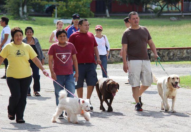 Decenas de familias participaron en la caminata en el Parque Ecológico del Oriente. (SIPSE)
