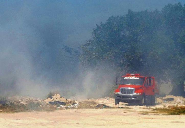 Las lluvias recientes contribuyeron a sofocar por completo los incendios que aún representaban algún riesgo. (Daniel Pacheco/SIPSE)