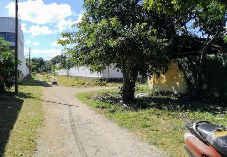 Los pobladores quieren el apoyo del gobierno para mejorar la zona. (Sara Cauich/SIPSE)