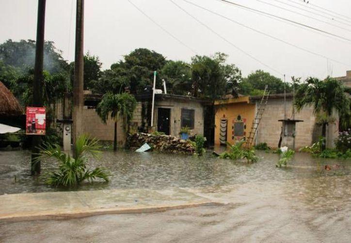 Invitan a la población en general a apoyar a las familias damnificadas por las lluvias. (Redacción/SIPSE)
