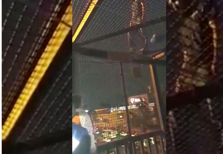 Policías impiden suicidio: hombre planeaba lanzarse de puente en Iztapalapa. (Foto: Captura de video)