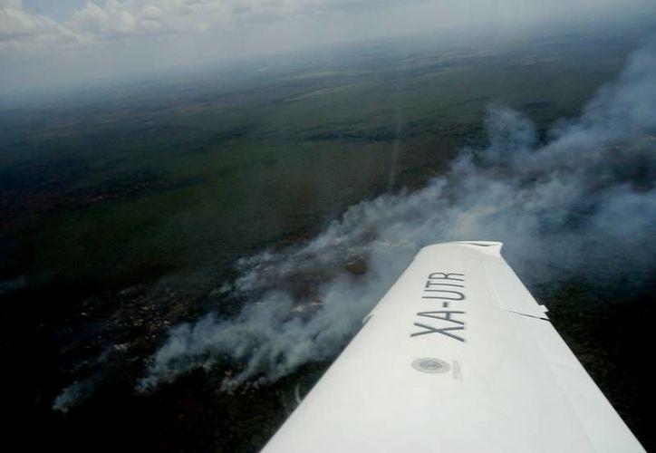 Los incendios forestales que se han registrado en Quintana Roo han sido, principalmente, ocasionados por quemas agropecuarias. (Redacción/SIPSE)