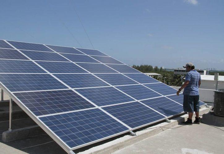 Es el primer proyecto en el Estado, por su tamaño y generación eléctrica. (Tomás Álvarez/SIPSE)