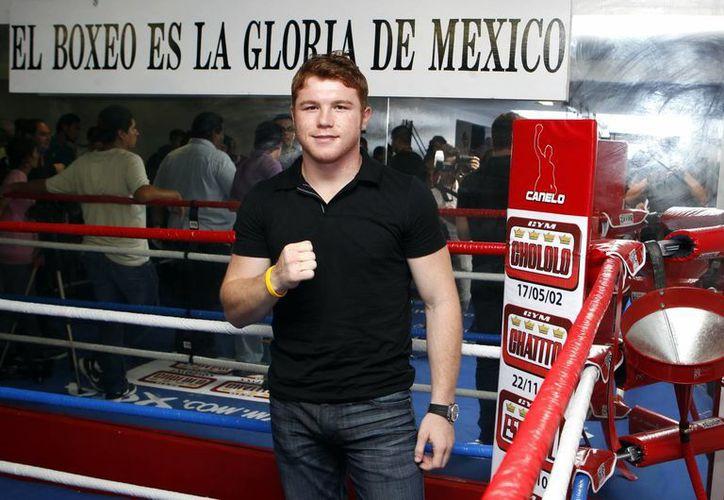 'Canelo' Álvarez llega a la pelea con Mayweather como campeón invicto del peso mediano junior, o superwelter.  (EFE/Archivo)