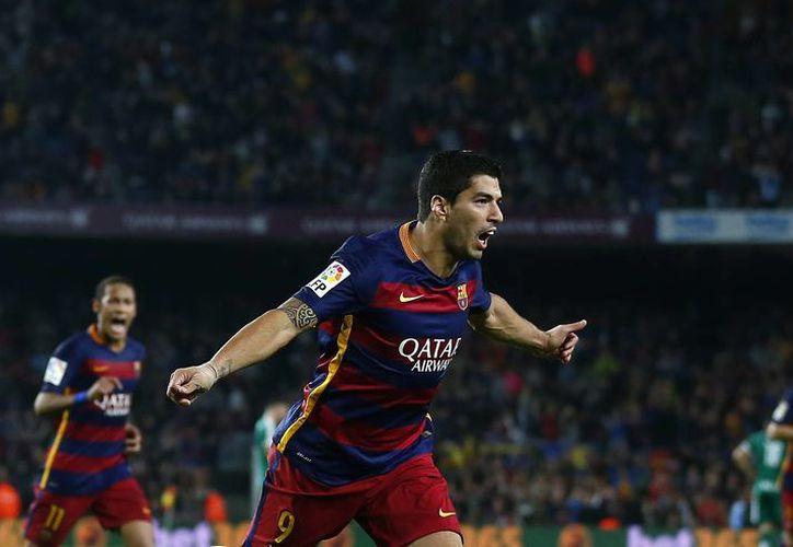 En su primer aniversario con la camiseta blaugrana, Luis Suárez marcó los tres goles con los que el Barcelona logró la victoria en el Camp Nou, en la fecha 9 de la Liga BBVA de España. (AP)