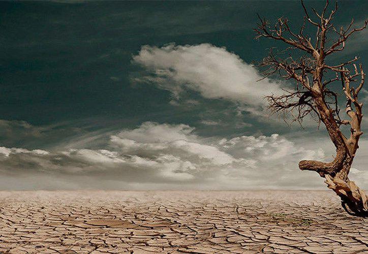 El ciclo del carbono se movería hacia un ámbito que ya no sería estable. (Foto: RT noticias)