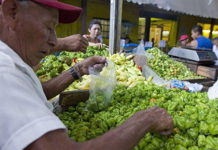 Certificación de origen del chile habanero tiene descontentos a los productores locales. (Milenio Novedades)