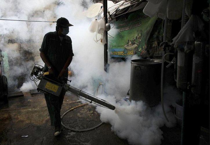 El zika sólo causa síntomas leves en los niños y adolescentes, según un estudio preliminar. (AP/Sakchai Lalit)