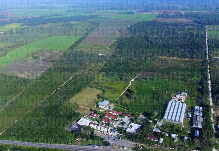El sitio en mención se ubica a 200 metros de la parte trasera del plantel. (Javier Ortiz/SIPSE)