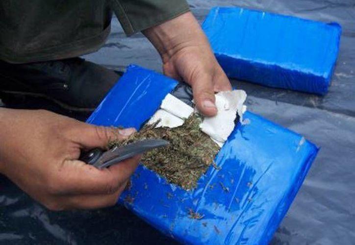 En el trascurso de este año, la fuerza pública ha confiscado 282 toneladas de marihuana. (radiosantafe.com)