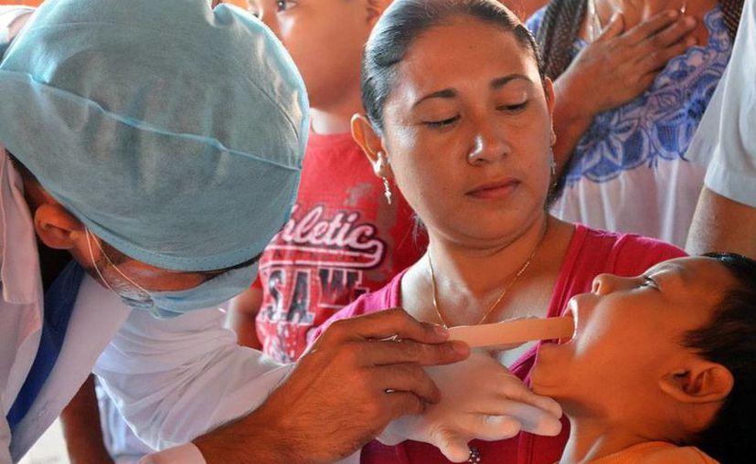 La Secretaría de Salud emprendió un programa de salud bucal en el que atenderá, en promedio, a 250 personas por día. La imagen es de contexto. (Milenio Novedades)