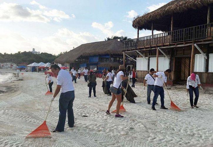 La playa Tortugas de Cancún fue limpiada durante la mañana de hoy. (Redacción/SIPSE)