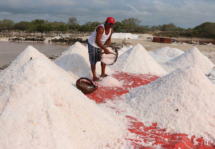 Raúl May May, salinero de Dzemul, es uno de los integrantes de la agrupación que decidió reactivar esta actividad en la zona. (José Acosta/Milenio Novedades)