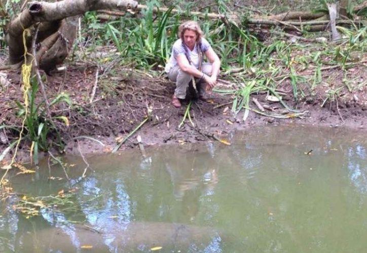 Hay luto por muerte de manatíes, se desconocen las causas. (Foto: Especial)