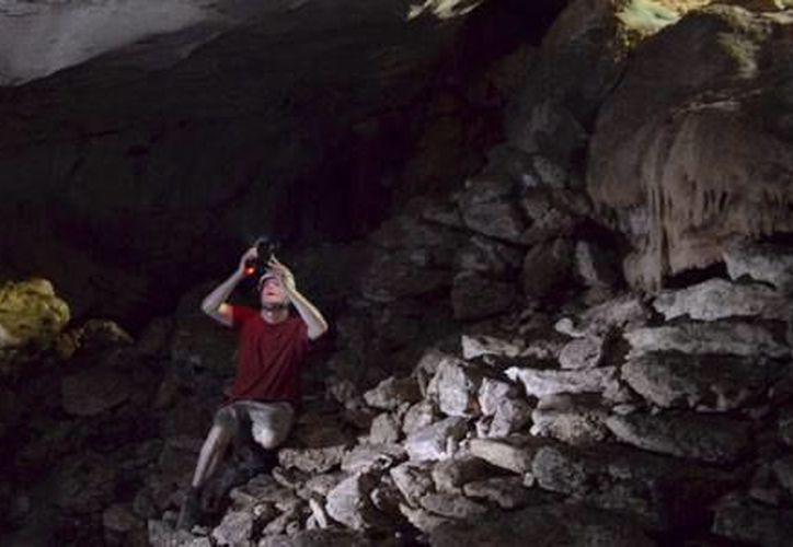 Arqueólogos y antropólogos  han analizado 30 sitios en el Estado. (Foto: Redacción)