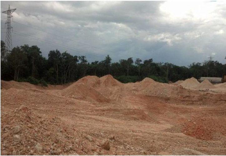 La remoción de vegetación forestal se detectó en una superficie de 15.75 hectáreas. (Harold Alcocer/SIPSE)