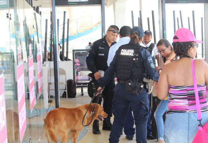 Los policías realizan rondines en las instalaciones de la terminal. (Octavio Martínez/SIPSE)