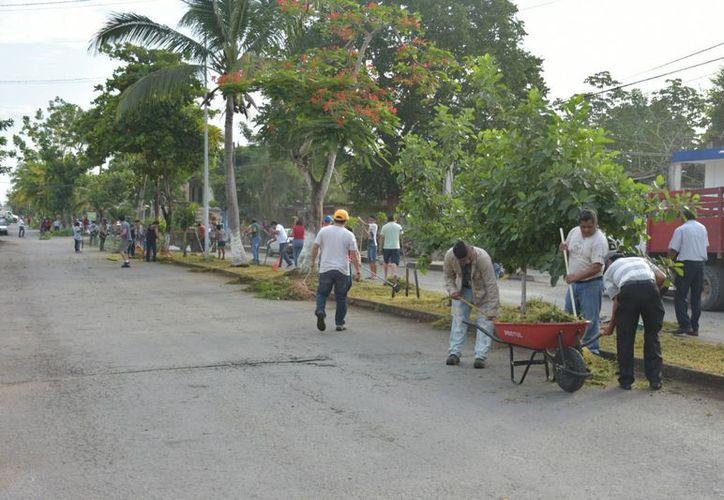 La jornada culminó a las 11 de la mañana, en la que se logró limpiar seis cuadras de la Av. Constituyentes. (Jesús Caamal/SIPSE)