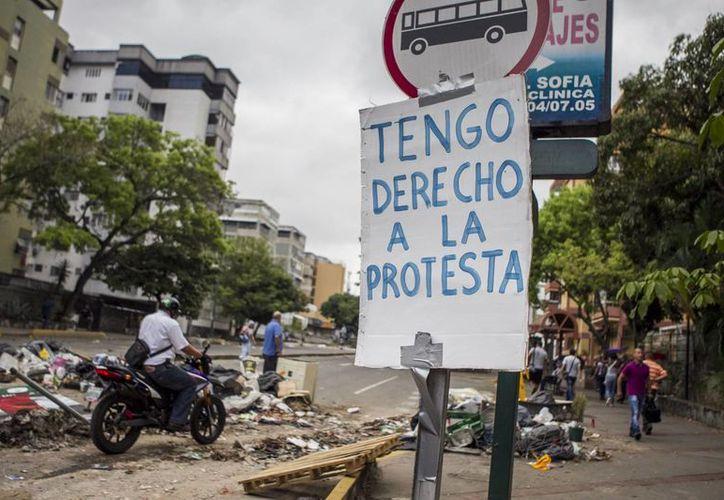 Desde el mes de febrero, Venezuela vive multitudinarias protestas apoyadas por estudiantes universitarios. (EFE)