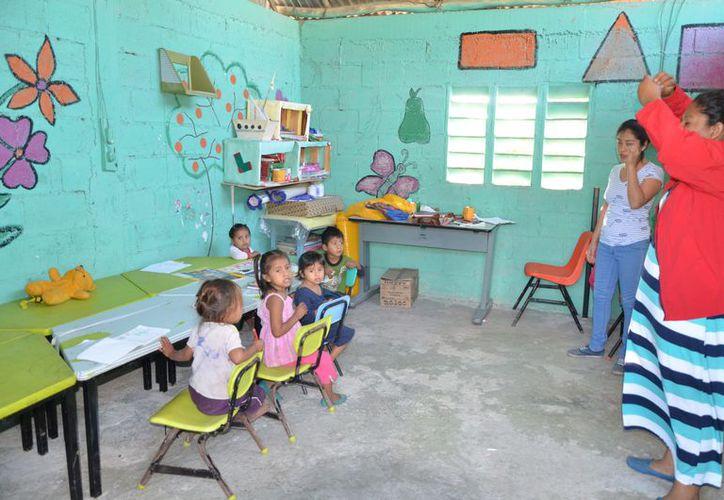 Cada año, cerca de 200 niños de entre seis y 14 años, viven como errantes y pasan su infancia en los cultivos de caña. (Joel Zamora/SIPSE)