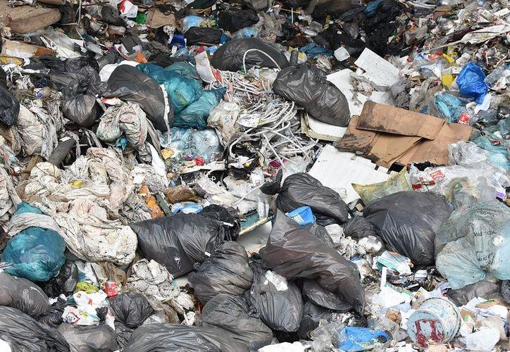 Son necesarios hasta 400 años para que una bolsa de plástico se biodegrade, según la organización ambientalista. (Foto: Pixabay)