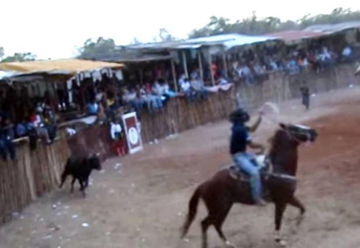 Durante una corrida de la fiesta tradicional de verano en Chicxulub Puerto, toros mataron a tres caballos. La imagen es de contexto, y sólo está utilizada con fines ilustrativos. (Captura de pantalla de YouTube)