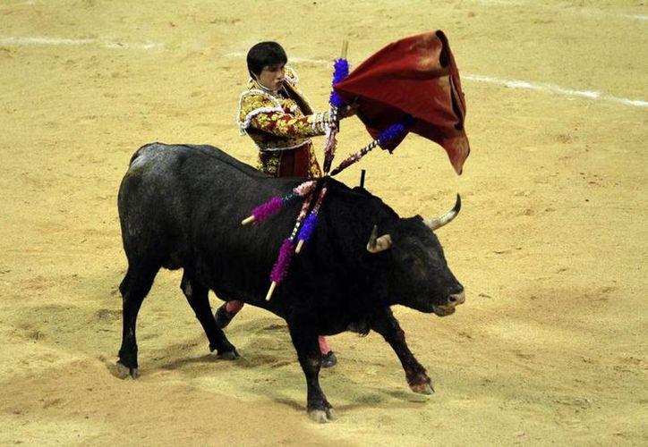 Roca Rey simplemente dio cátedra en el Coliseo Yucatán, donde salió triunfador al cortar tres orejas.- (César González/SIPSE)