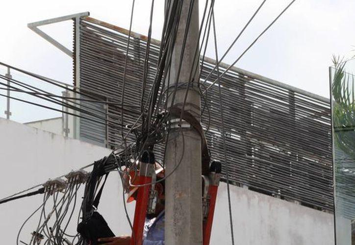 Durante los próximos dos meses la CFE dará mantenimiento masivo a la red eléctrica. (Octavio Martínez/SIPSE)
