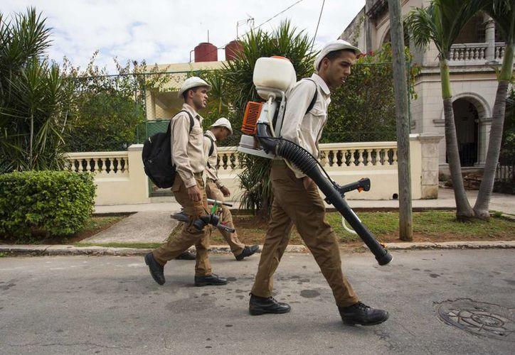 Las autoridades creen que es cuestión de tiempo para que el virus del zika llegue a Cuba, por ello han desplegado un intenso operativo de prevención. (AP)