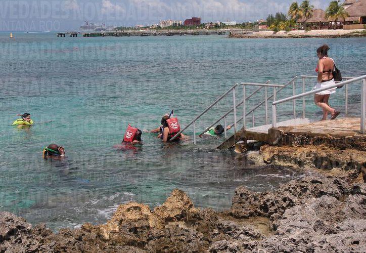 Se esperaba la inversión de mil 100 millones de pesos para el acuario de Cozumel. (Foto: Gustavo Villegas/SIPSE).