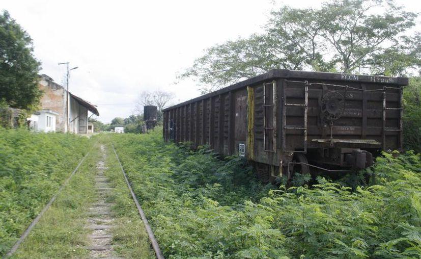 Las comunidades mayas serían las afectadas por el proyecto. (Octavio Martínez/SIPSE)