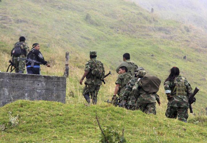 El gobierno de Colombia repartirá entre campesinos las tierras que arrebató a las FARC en la Operación Yari. (Archivo/AP)