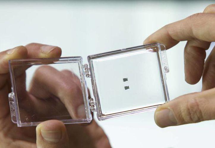 Un grupo de científicos españoles diseñó esta pequeño chip capaz de detectar el virus causante del Sida en los primeros días de infección. (CSIC)