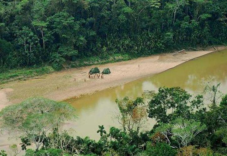 En lo que va del año se han producido 230 casos de rabia silvestre en todo Perú, especialmente en la zona amazónica. Murciélagos atacan a 16 soldados. (abc.es)