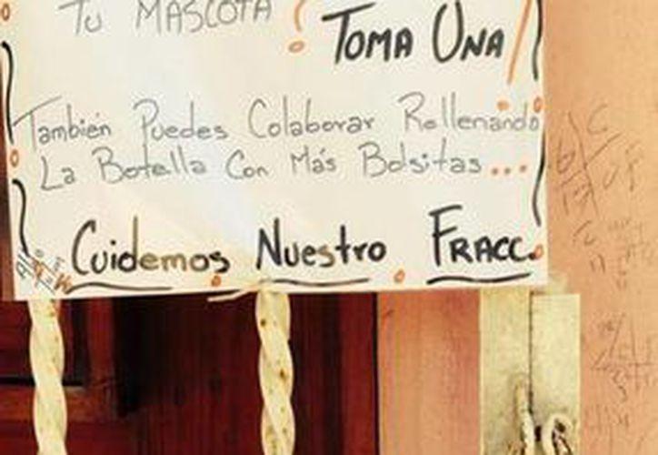 """Con carteles e incluso con botes de bolsitas """"gratis"""", los habitantes de Villas Tulum buscan ver menos heces fecales de animales en sus calles. (Rossy López/SIPSE)"""