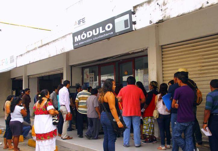 Más de 95 mil electores no renovaron su mica. (Juan Albornoz/SIPSE)