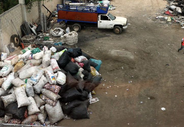 Las empresas de reciclaje almacenan cacharros que acumulan agua. (Milenio Novedades)
