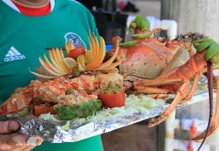 Los pescadores comercializan las langostas vivas y enteras en 225 pesos el kilogramo. (Harold Alcocer/SIPSE)