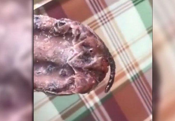 La mujer viralizó la foto de su paleta en las redes sociales. (Internet)