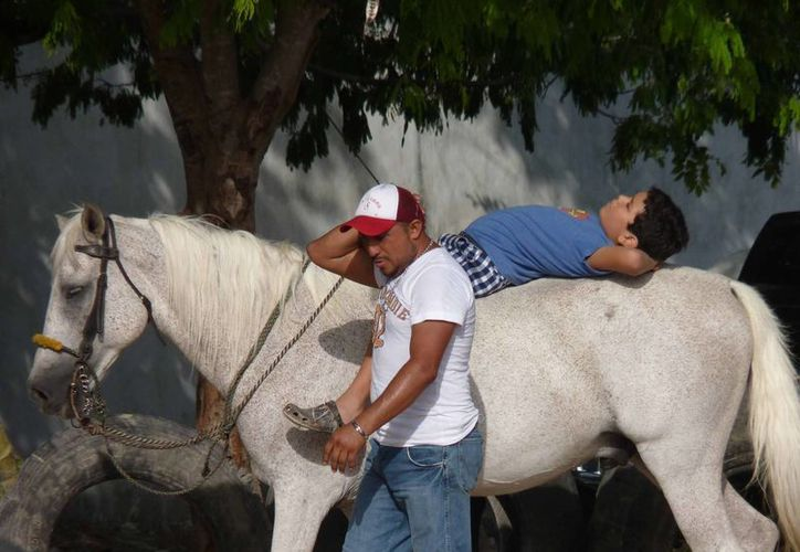 El Estado avanza en esta práctica, cuando empezaron solo existía en Cozumel, ahora hay en Cancún, Tulum, Chetumal y Playa del Carmen. (Licety Díaz/SIPSE)