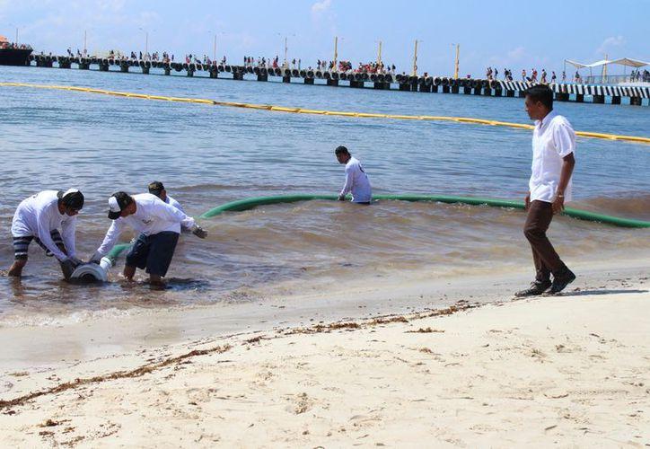 En la primera fase del proyecto, una manguera gigante succionará el sargazo a orilla de la playa. (Foto: Adrián Barreto/SIPSE)