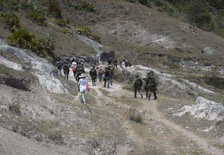 """Habitantes de Chilapa y activistas del colectivo """"Los otros desaparecidos"""" realizan la búsqueda en el cerro del Tepehuixco. (Milenio)"""