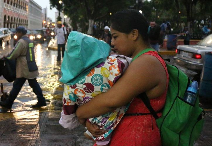Las lluvias propician en gran medida la aparición de enfermedades. (Milenio Novedades)